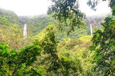 Hiking the lush Halawa Valley to giant waterfalls