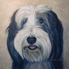 Portrait of Bearded Collie Digby Print of an Oil Painting (35.00 USD) by SandraOlenik Bearded Collie, Virtual Art, Perler Patterns, Dogs And Puppies, Terrier, Dog Cat, Canvas Prints, Art Gallery, Dogs