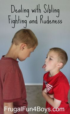 Tips of dealing with sibling fights in a Christian home.