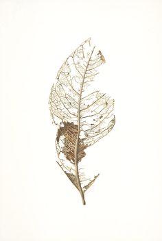 Little Leaf Skeleton-Cie-Elle copy. Botanical Drawings, Botanical Art, Alien Art, Leaf Skeleton, Nature Art, Skeleton Drawings, Whimsical Art, Skeleton Art, Botanical Watercolor