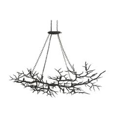 Chandelier in Rustic Bronze Finish at Destination Lighting