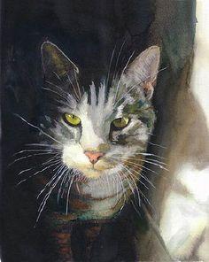 Coup de coeur pour ces portraits de chats réalisés avec talent par l'artiste Alex Carter. On dirait notre FEELING !!! ( Source photos internet )
