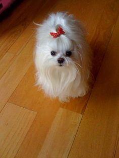 My little girl-star-floor.jpg