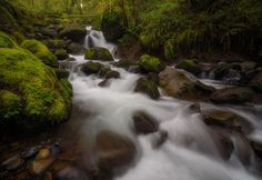 Up the Creek by Erin Tolie on 500px