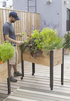 """Our Standing Garden lets you garden without bending or stooping. Grow salad greens, herbs, even tomatoes and peppers right at your doorstep. The handsome, rot-resistant cedar bed on powder-coated aluminum legs holds a 4-gallon self-watering tray, to keep soil perfectly moist without daily watering. 10-1/2"""" planting depth for large plants, even root crops."""