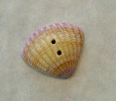 - Large Shell