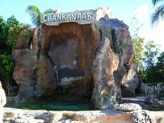 Chankanaab National Park, Cozumel, Mexico. Jet Skies, Cozumel Mexico, Quintana Roo, Travel Videos, Cruise Tips, Snorkeling, Maya, Mount Rushmore, Caribbean