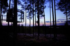 Treehotel. Design by Kent en Britta, made by Bolle Tham & Martin Videgård