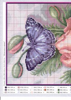 Mariposas 🐛 azul #1