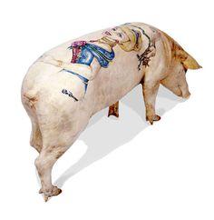 Cinderella tattooed pig by Wim Delvoye