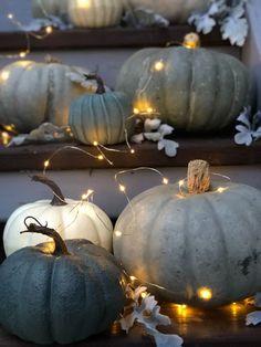 Pretty Fall Porch // Love the grey & blue pumpkins! Pretty Fall Porch // Love the grey & blue pumpkins! Pumpkin Decorating, Porch Decorating, Decorating Ideas, Decor Ideas, Decorating With White Pumpkins, Room Ideas, Grey Pumpkin, Coastal Fall, Small Front Porches