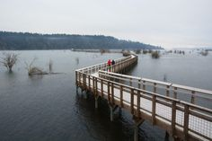 2. The Nisqually Estuary Boardwalk Trail at Nisqually National Wildlife Refuge (Olympia)