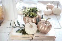 DIY Fall Pumpkin Planter {Magnolia Homes~ Fixer Upper}.. uses those real, tiny, pumpkins, and wax!