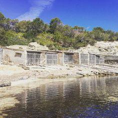 Pou des Lleó. Eine der kleinen Buchten auf Ibiza, in der noch nicht das Seegras für die Touristen entfernt wurde. Nur mit dem Auto zu erreichen oder mit dem Fahrrad, aber so schön! #Ibiza #SantaEulia Ibiza, Trips, Bays, Mediterranean Sea, Family Getaways, Travel Inspiration, Travel Advice, Bike, Ibiza Town