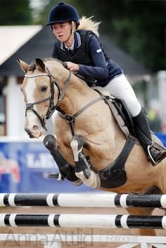 Why do you think is it essential to consider the proper suggestions in acquiring the equestrian boots to be utilized with or without any horseback riding competitors? Show Jumping Horses, Show Horses, Cute Horses, Beautiful Horses, Horse Wallpaper, Horse Facts, Horse Posters, English Riding, Equestrian Outfits