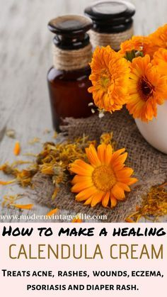 There are many benefits of calendula oils and creams: they calm sensitive, dry, red and irritated skin. Heal wounds and burns. Calendula Oil, Calendula Benefits, Oil Benefits, Natural Oils For Skin, Natural Health, Salve Recipes, Moisturizer For Dry Skin, Homemade Moisturizer, Herbal Remedies