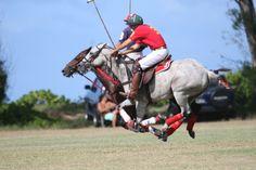 Hawaii Polo Club