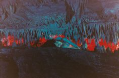 Moonmilk by Ryan McGinley - The Fox Is Black