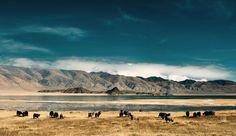 La Mongolie #voyage #travel #Asie
