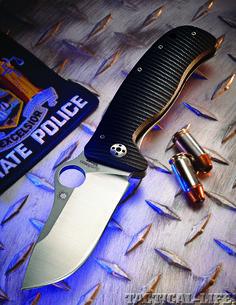 LionSpy Steel Knife