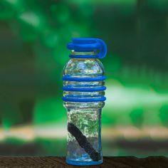 BottlesUp 16oz Blue with Kishu design inspiration on Fab.