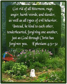 Bible Verse For Today, Bible Verses, Bible Forgiveness, Ephesians 4, Forgiving Yourself, Rage, Behavior, Christ, God