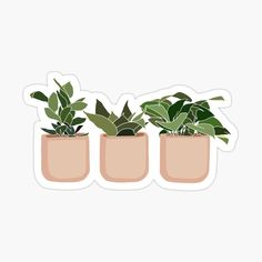 Preppy Stickers, Cute Laptop Stickers, Cool Stickers, Printable Stickers, Kawaii Stickers, Sticker Shop, Sticker Design, Plant Aesthetic, Tumblr Stickers