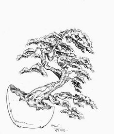 and a Desire to Improve Your Eye for Bonsai Design Bonsai Tree Tattoos, Japanese Bonsai Tree, Prunus Mume, Bonsai Art, Bonsai Trees, Tree Sketches, Wire Trees, Tattoo Outline, Mountain Tattoo