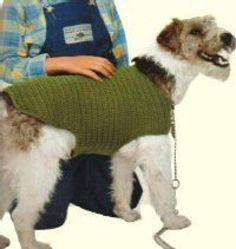 patron tricot pull pour chien gratuit