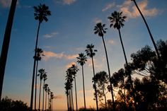 Great news SoCal - The Air in Southern California Just Got a Whole Lot Cleaner!