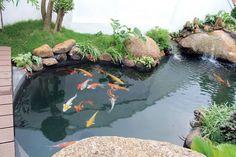 40 Wonderful Small Garden Design To Beautify Your Home Yard Small Fish Pond, Koi Fish Pond, Fish Ponds, Koi Pond Design, Small Garden Design, Outdoor Ponds, Ponds Backyard, Above Ground Pond, Mini Pond