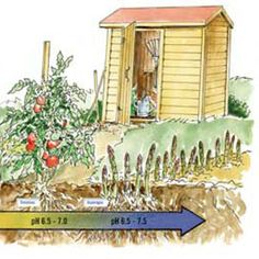 Your Garden's Soil pH Matters -Learn what causes acidic soil and alkaline soil, plus how to apply the results of a soil pH test in your organic garden. -By Barbara Pleasant on April/May 2014 -Read more: http://www.motherearthnews.com/organic-gardening/soil-ph-zm0z14amzkin.aspx#ixzz2w98kEZvU