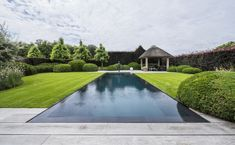 pool in grass no coping Outdoor Pool, Outdoor Spaces, Outdoor Living, Terrace Garden, Garden Pool, Moderne Pools, Dream Pools, Pergola With Roof, Swimming Pool Designs