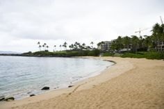Kapalua bay (safest beach on maui)