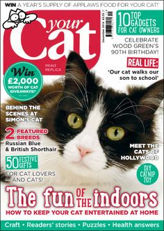 December's Your Cat - http://yourcat.co.uk/Your-Cat-Magazine-Current-Issue/your-cat-current-issue.html