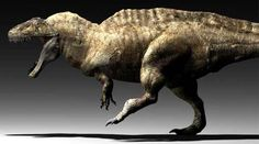 Acrocanthosaurus vs Allosaurus | Without quite knowing why, Acrocanthosaurus lived to the public under ...