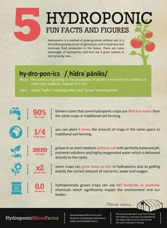 Hydroponic facts