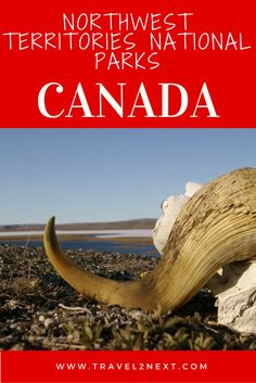 The Northwest Territories in Canada ihas five national parks and 34 territorial parks.