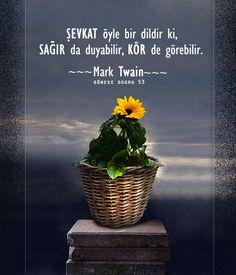 Mark Twain özlü sözler güzel sözler