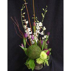 Moss Balls w/ Tulips, Dendrobiums, Spider Mums - WholesaleFlowersAndSupplies.com