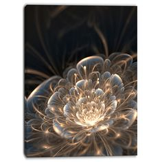 Designart - Fractal Flower with Golden Rays - Floral Canvas Art Print
