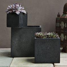 *modern planters, vases, succulents, plants* - Great planters by West Elm.