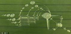 Crop circles | Crop Circles | Liberación AHORA