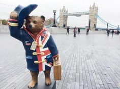 There are now 50 amazing Paddington statues across London to celebrate the arrival of Paddington in cinemas on 28 November