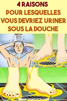 4 raisons pour lesquelles vous devriez uriner sous la douche #urine #uriner #douche #raison #astucesnaturelles Vida Natural, Salud Natural, Oyster Card, Acide Aminé, Fitness, Health, Menu, Windows, Design