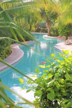 Everyone loves luxury swimming pool designs, aren't they? We love to watch luxurious swimming pool pictures because they are very pleasing to our eyes. Now, check out these luxury swimming pool designs. Luxury Swimming Pools, Luxury Pools, Dream Pools, Lazy River Pool, Swimming Pool Pictures, Swimming Pool Designs, Pool Spa, Beautiful Pools, Cool Pools