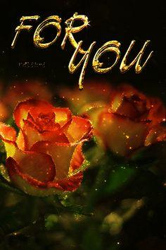 "Photo from album ""Розы, шиповник"" on Yandex. Beautiful Heart Images, Love Heart Gif, Love You Gif, Love You Images, Beautiful Gif, Beautiful Flower Drawings, Beautiful Flowers Pictures, Beautiful Rose Flowers, Good Night Gif"