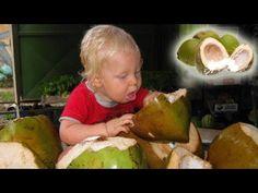5 Health Benefits Of Coconut Water Healthy Food Options, Raw Food Recipes, Healthy Recipes, Coconut Water Benefits, Raw Food Diet, Diet And Nutrition, Raw Vegan, Health And Wellness, Health Tips