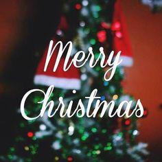 #Christmas #ChristmasEve #ChristmasTree #ChristmasMusic #ChristmasCookies #ChristmasTime #ChristmasLights #WhiteChristmas #Carols #Winter #Xmas #Snow #Snowflake #Snowman #Cold #Cozy #Love #Present #Presents #MerryChristmas #December #Santa #Elf #Gingerbread #Rudolph #Star #Stars #Ornaments #Reindeer #christmasgift #christmas #instafollow #F4F #tagforlikes