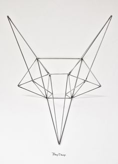 """""""The love for nature expressed in geometry."""" Bongo Design."""